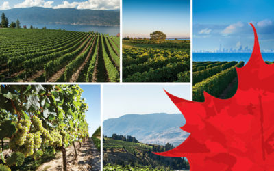 Canada: Wines with a Cool Climate Sensibility
