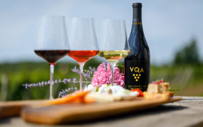 Ontario VQA Wine Tasting